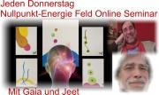 Jeden Donnerstag Nullpunkt-Energie Feld Online Seminar